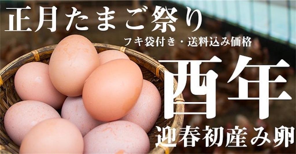 f:id:fukikeisuke:20170101164223j:plain