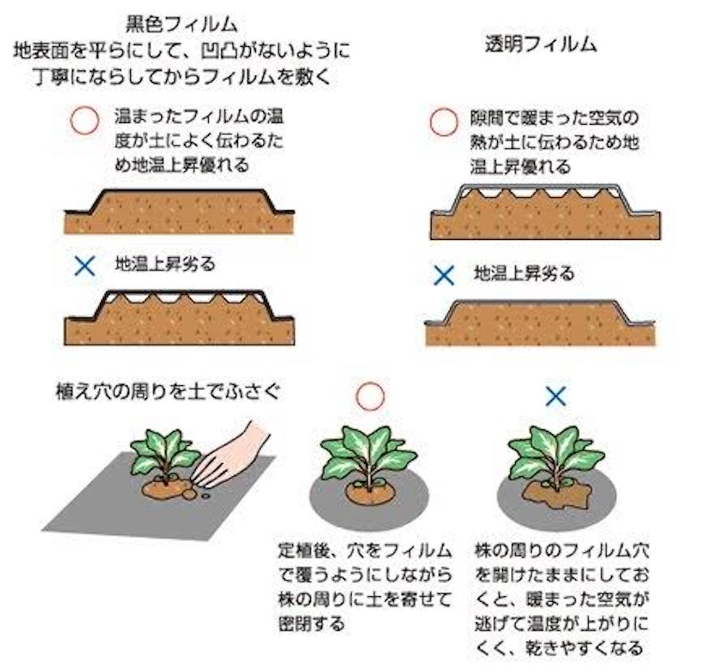 f:id:fukikeisuke:20200414063848j:image
