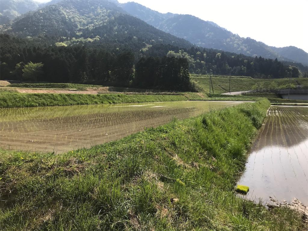 f:id:fukikeisuke:20200515003715j:image