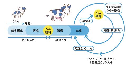 f:id:fukikeisuke:20200518213316p:plain