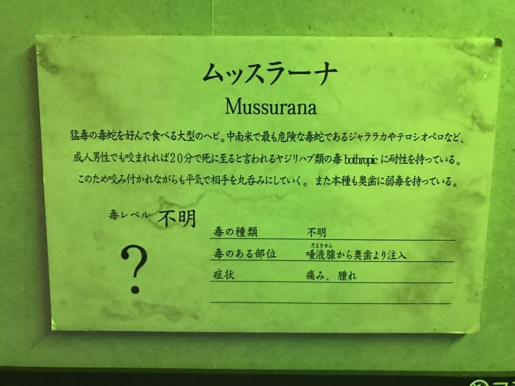 f:id:fukkin_tanaka:20180416235921j:plain
