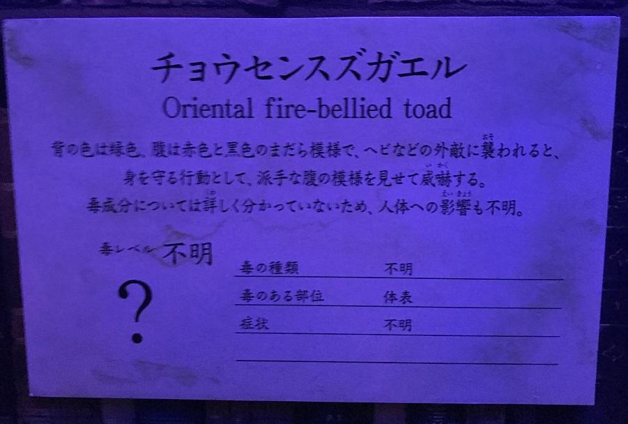 f:id:fukkin_tanaka:20180417000043j:plain