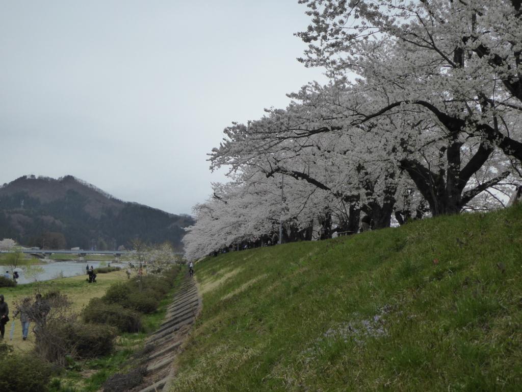 f:id:fuku-fukuro:20170429224754j:plain