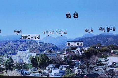 f:id:fuku-fukurou:20190630004243j:plain