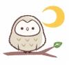 f:id:fuku-fukurou:20190718105011j:plain