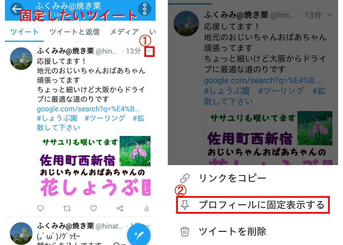 f:id:fuku-mimi:20190707144135p:plain