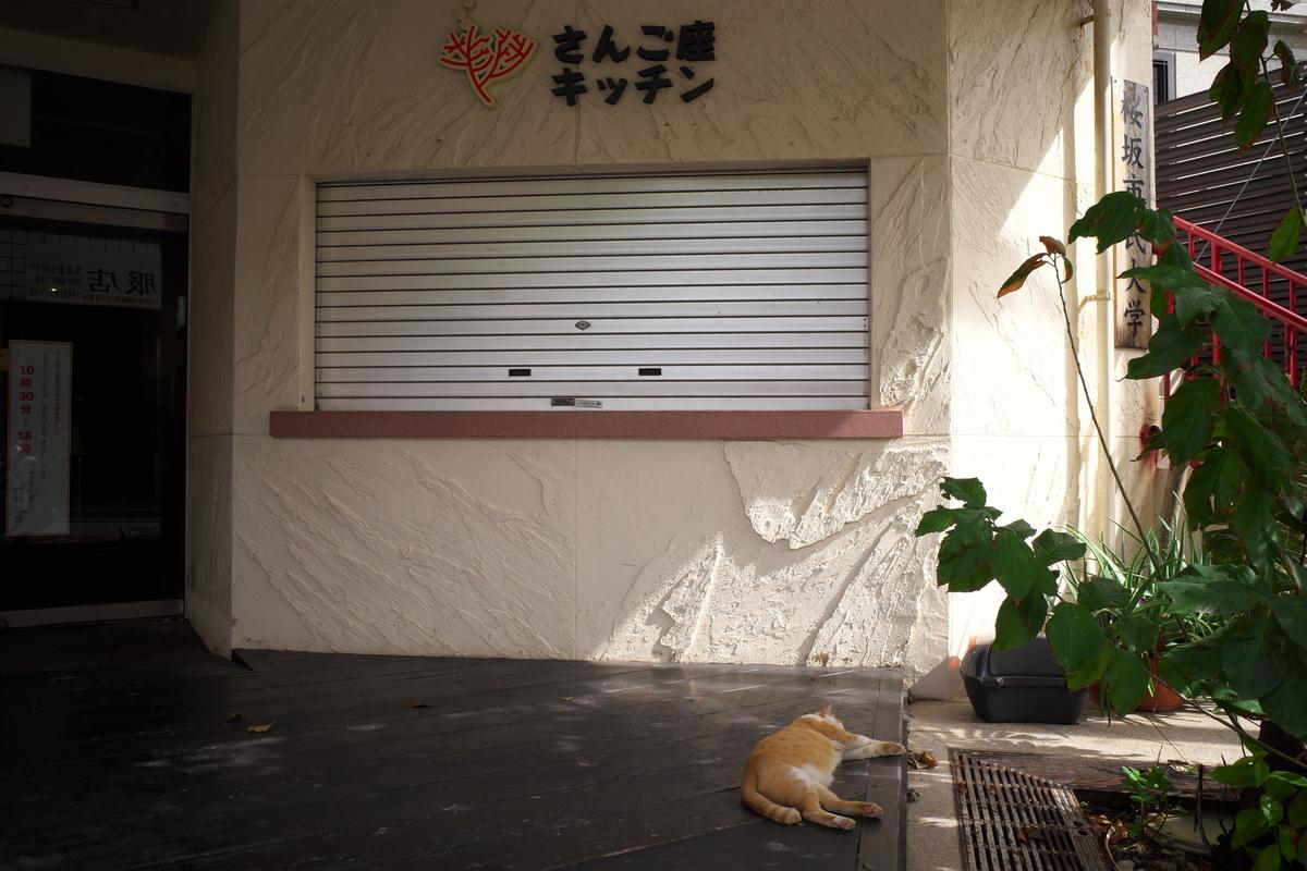 f:id:fuku-taro:20210926142855j:plain