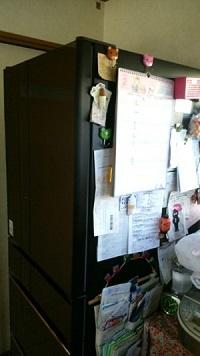 冷蔵庫 貼る たくさん