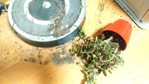 部屋の掃除片付け 汚れる
