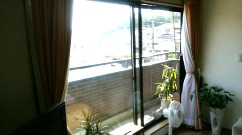 大窓カーテン
