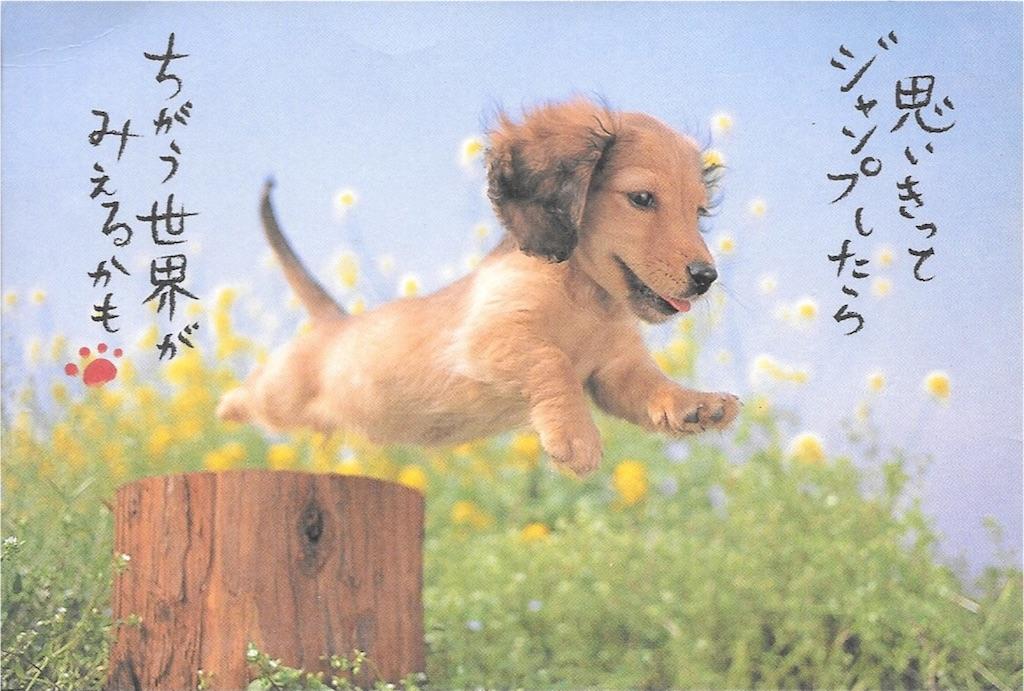f:id:fuku19651215:20180101102121j:image