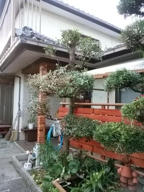 f:id:fukubuggy:20160716165029j:plain
