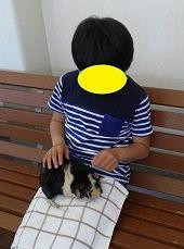 f:id:fukubuggy:20170424234118j:plain