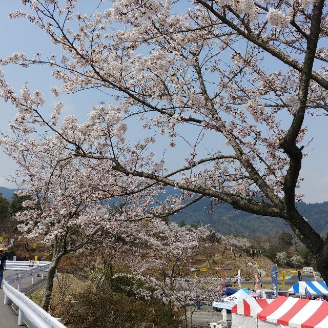 f:id:fukuda-ddd:20180403210807j:image