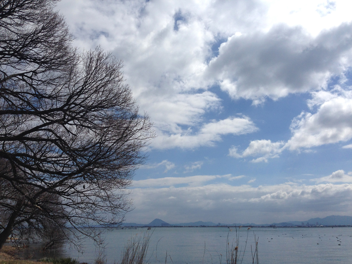 f:id:fukuda040416:20140322103035j:plain
