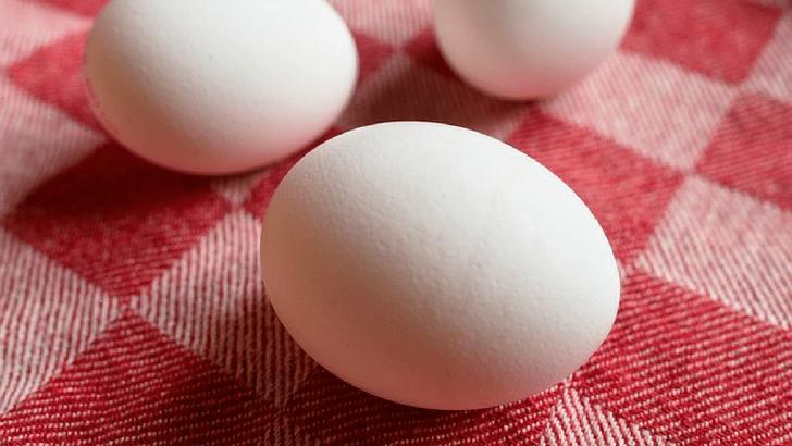 生卵 玉子