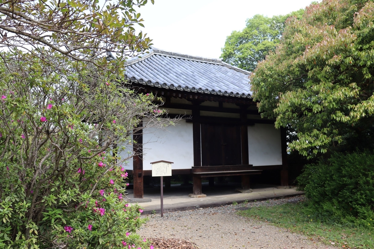 f:id:fukuebu117go:20210720221615j:plain