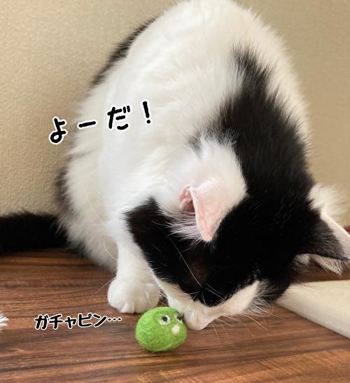 f:id:fukufukudo:20210414121517j:plain