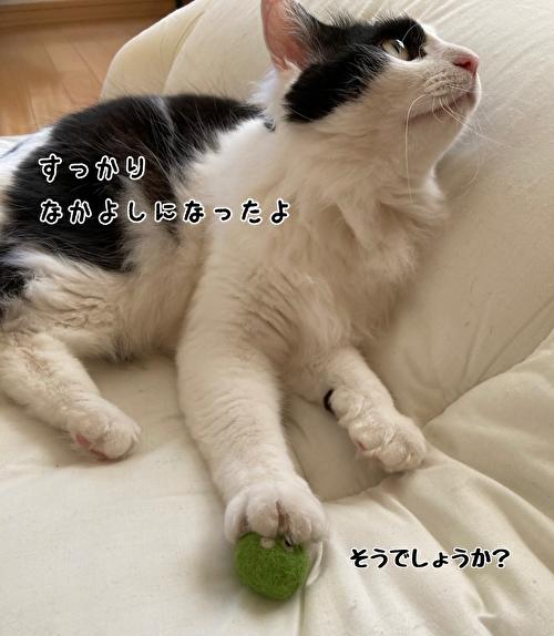 f:id:fukufukudo:20210414121606j:plain