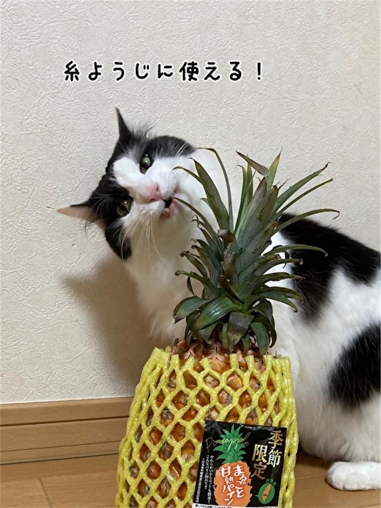 f:id:fukufukudo:20210504152711j:plain
