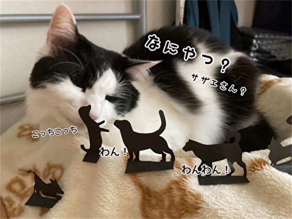 f:id:fukufukudo:20210915123357j:plain