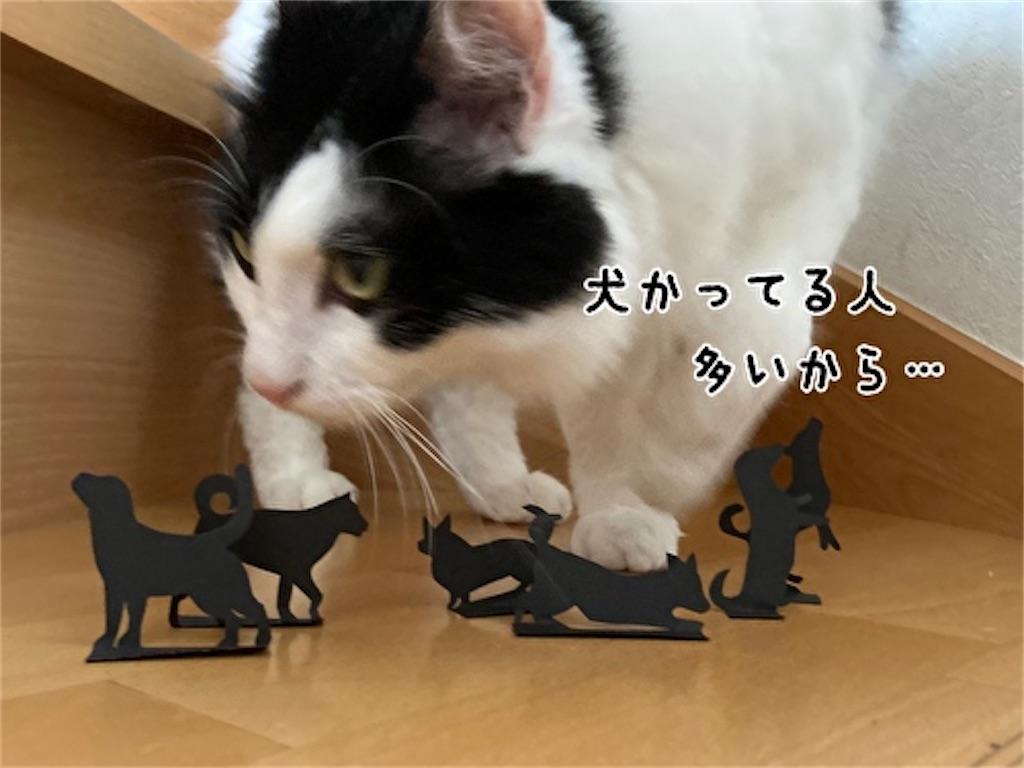 f:id:fukufukudo:20210915123532j:plain