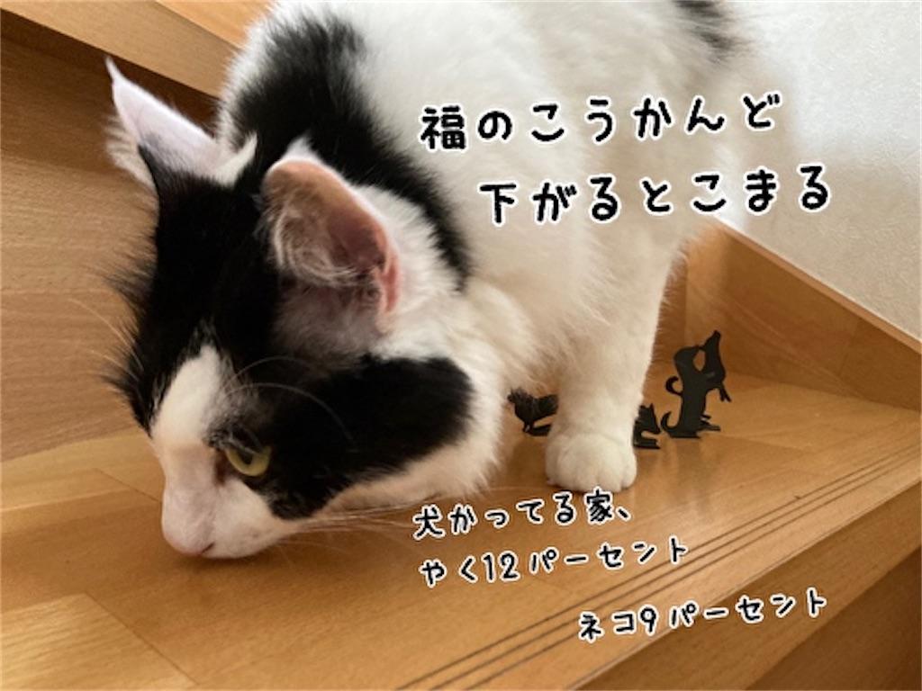 f:id:fukufukudo:20210915123547j:plain