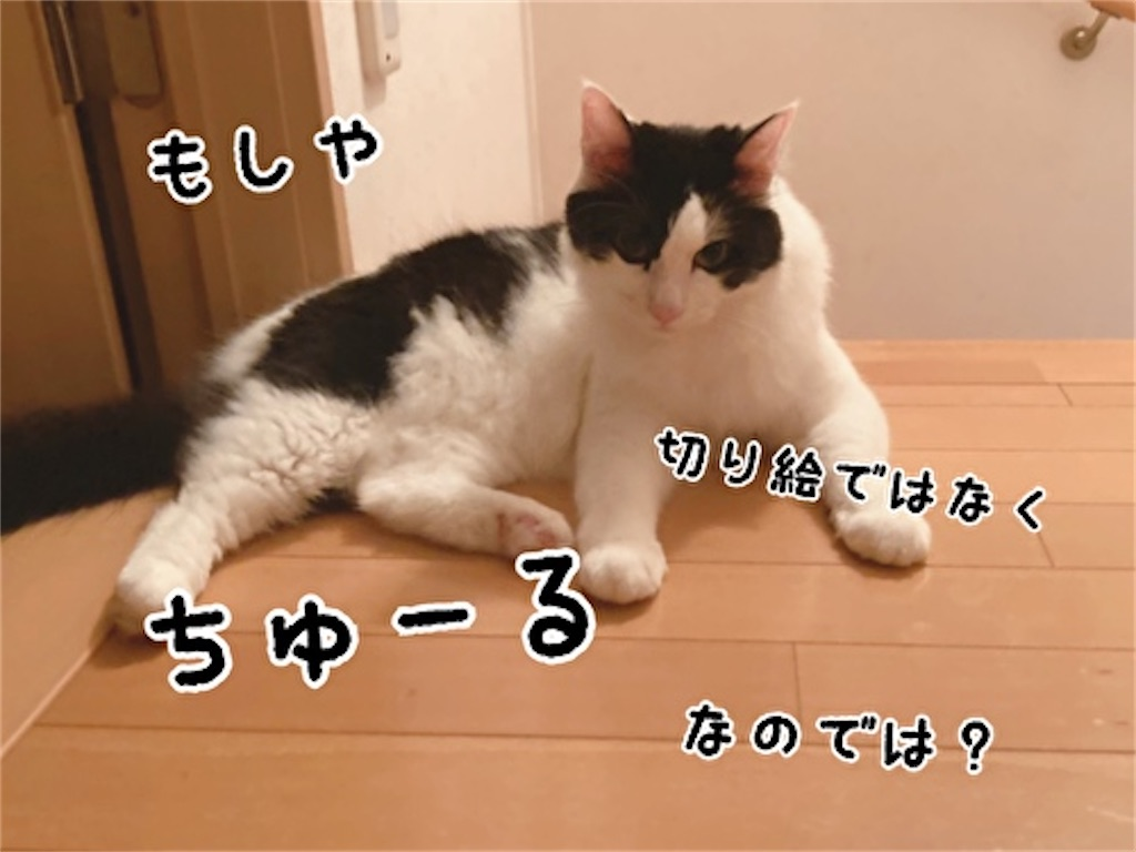 f:id:fukufukudo:20211002185147j:plain
