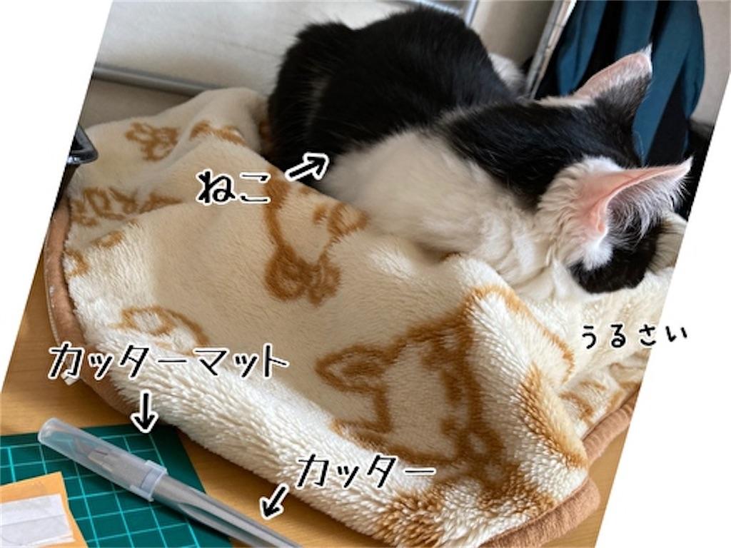 f:id:fukufukudo:20211002185213j:plain