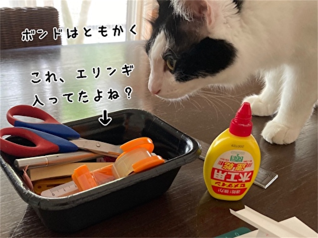 f:id:fukufukudo:20211003142944j:plain
