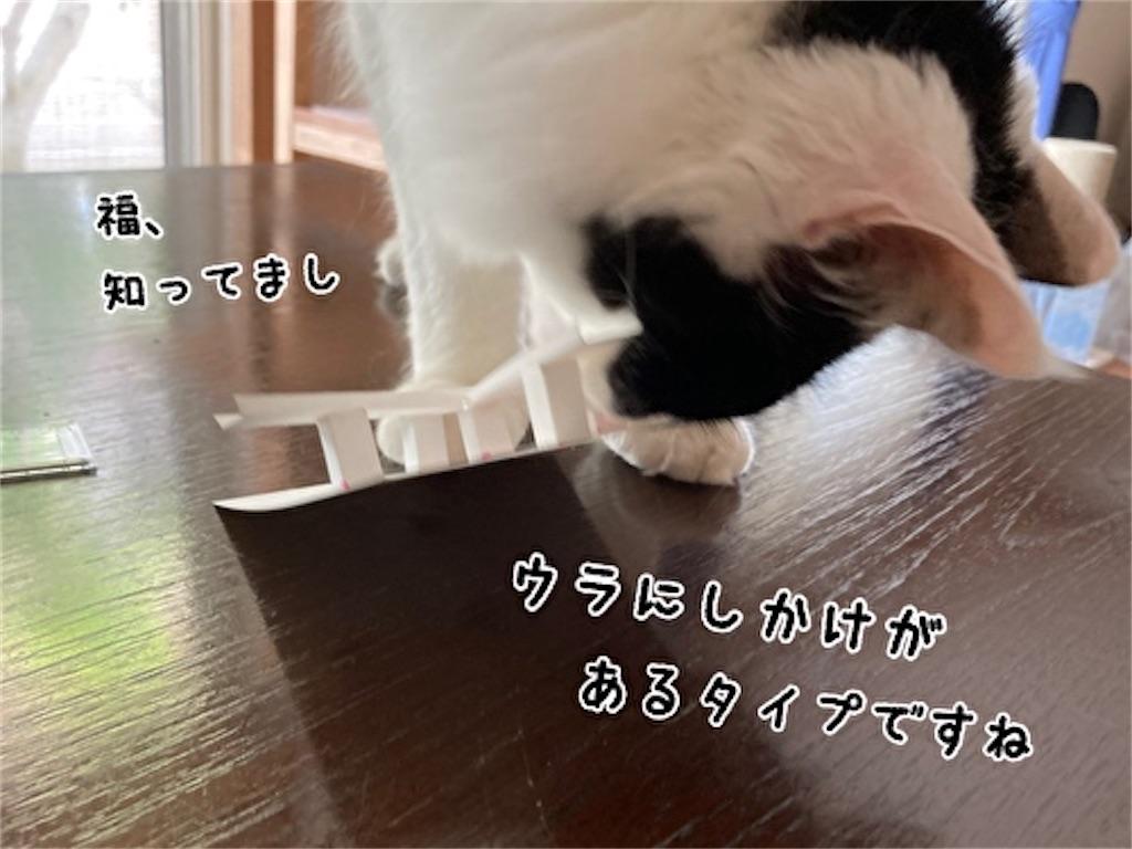 f:id:fukufukudo:20211003143105j:plain