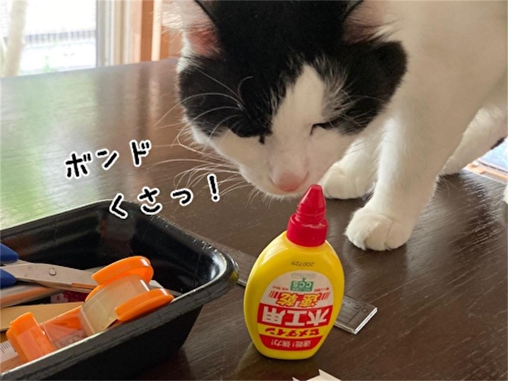 f:id:fukufukudo:20211003143635j:plain