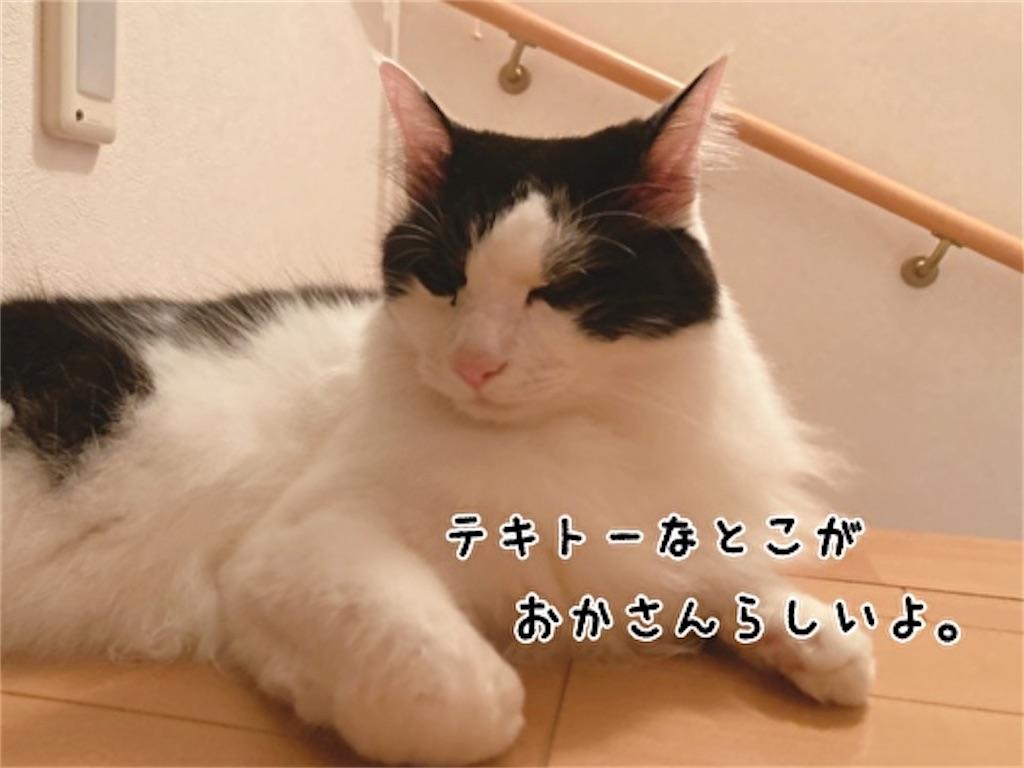 f:id:fukufukudo:20211003170601j:plain