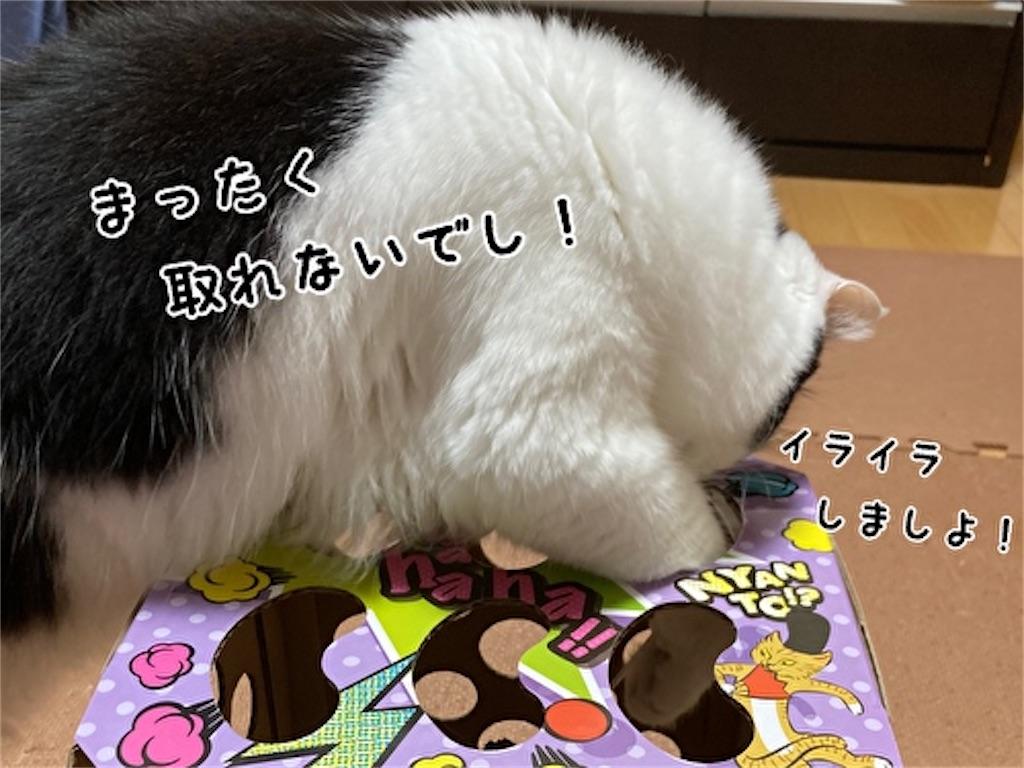 f:id:fukufukudo:20211006123845j:plain