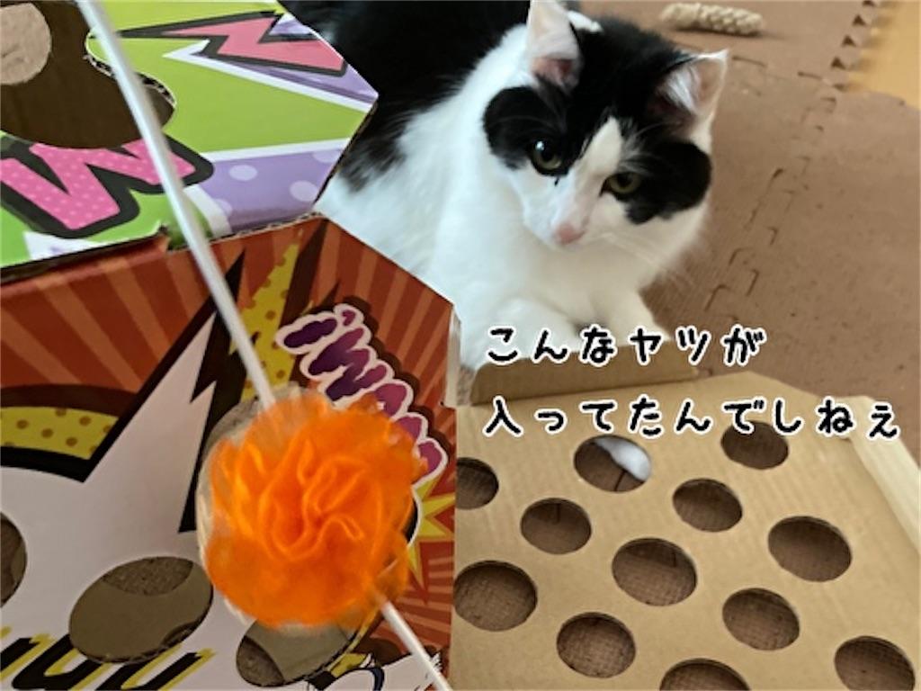 f:id:fukufukudo:20211006123906j:plain