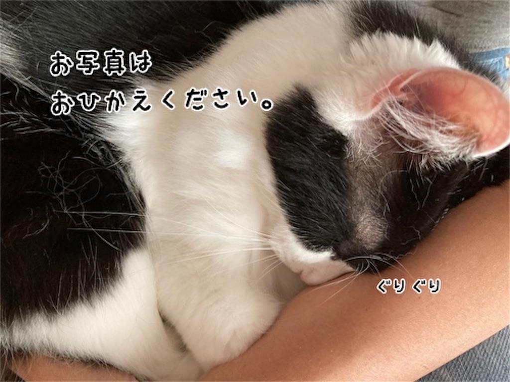 f:id:fukufukudo:20211013145955j:plain