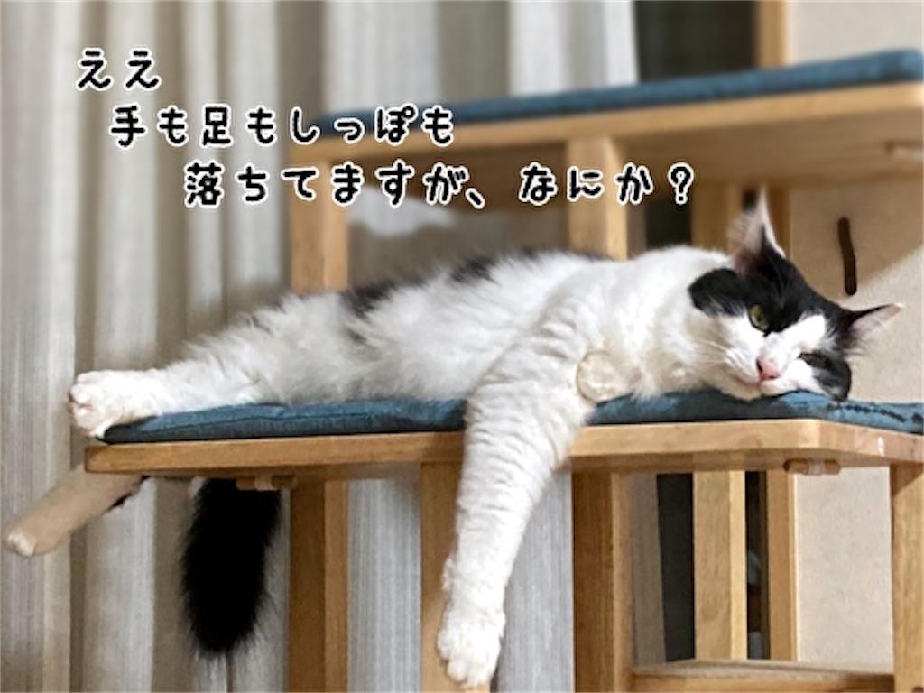 f:id:fukufukudo:20211013150052j:plain