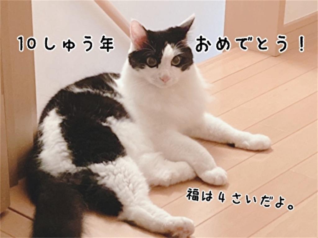 f:id:fukufukudo:20211017110947j:plain