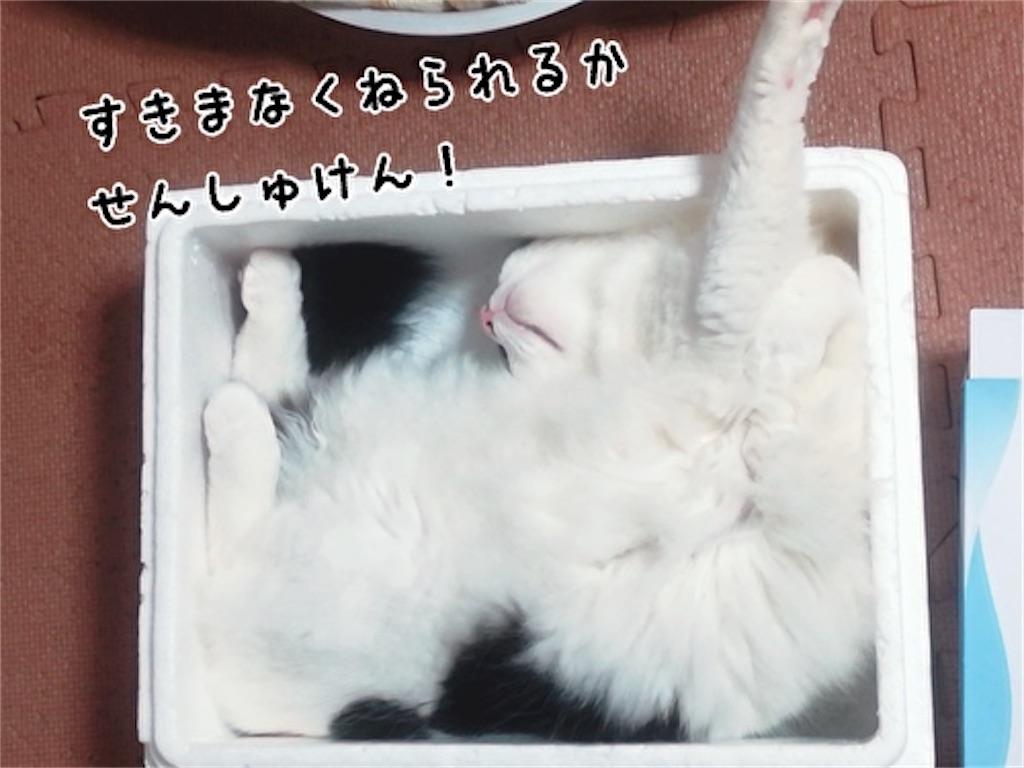 f:id:fukufukudo:20211017111550j:plain