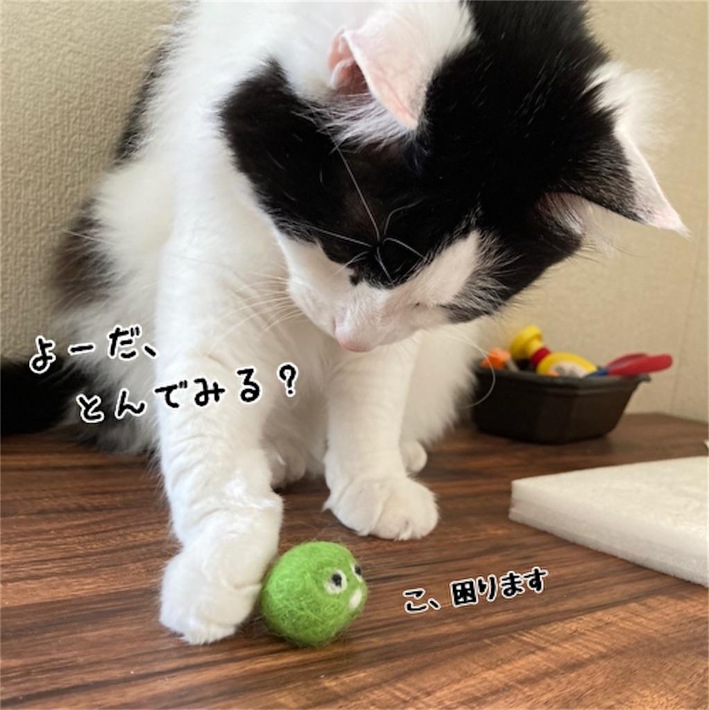 f:id:fukufukudo:20211019170733j:plain