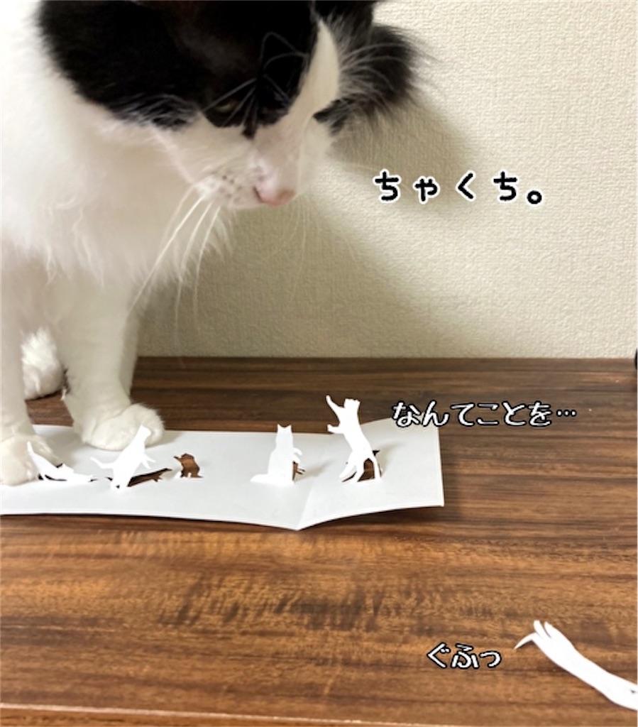 f:id:fukufukudo:20211019173709j:plain
