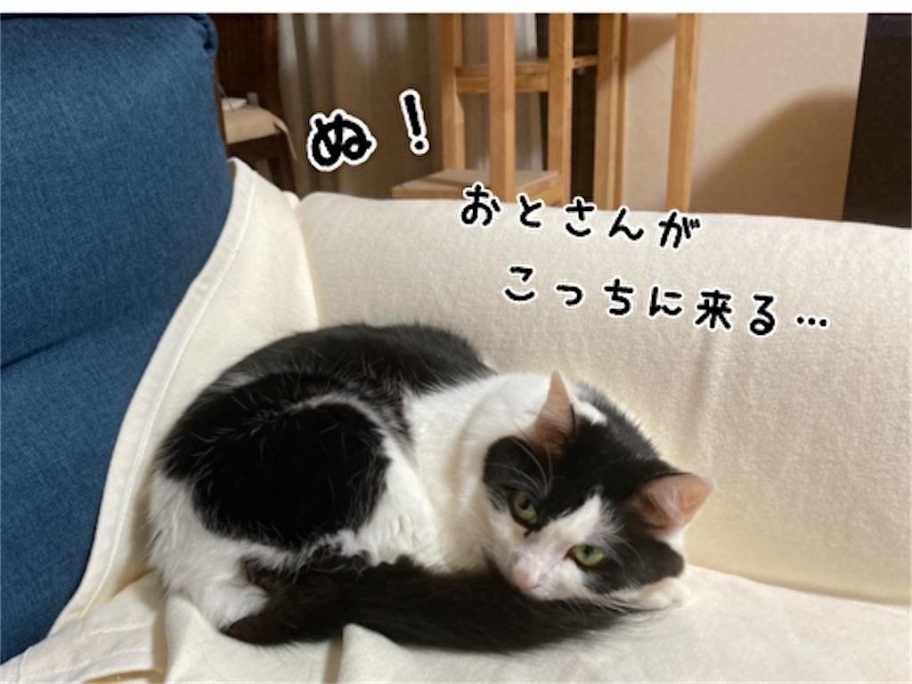 f:id:fukufukudo:20211023145038j:plain