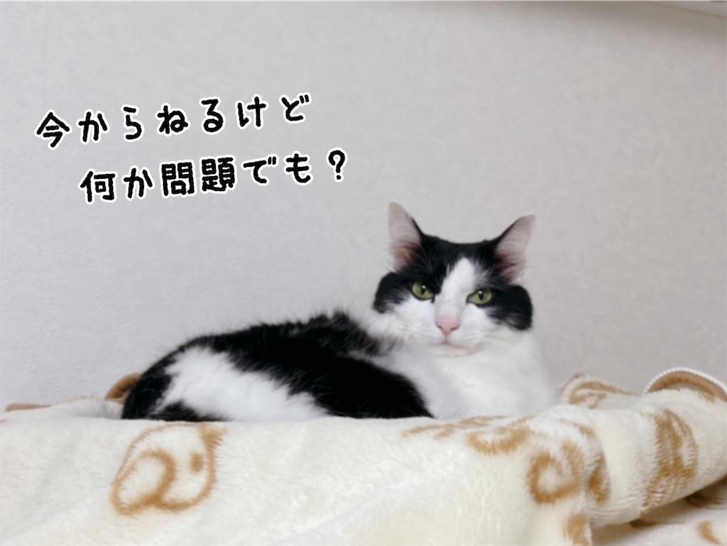 f:id:fukufukudo:20211023145101j:plain