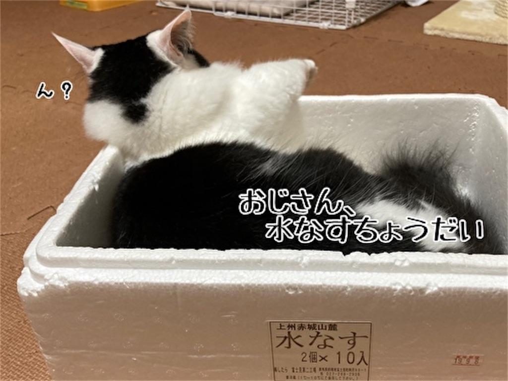 f:id:fukufukudo:20211023145746j:plain