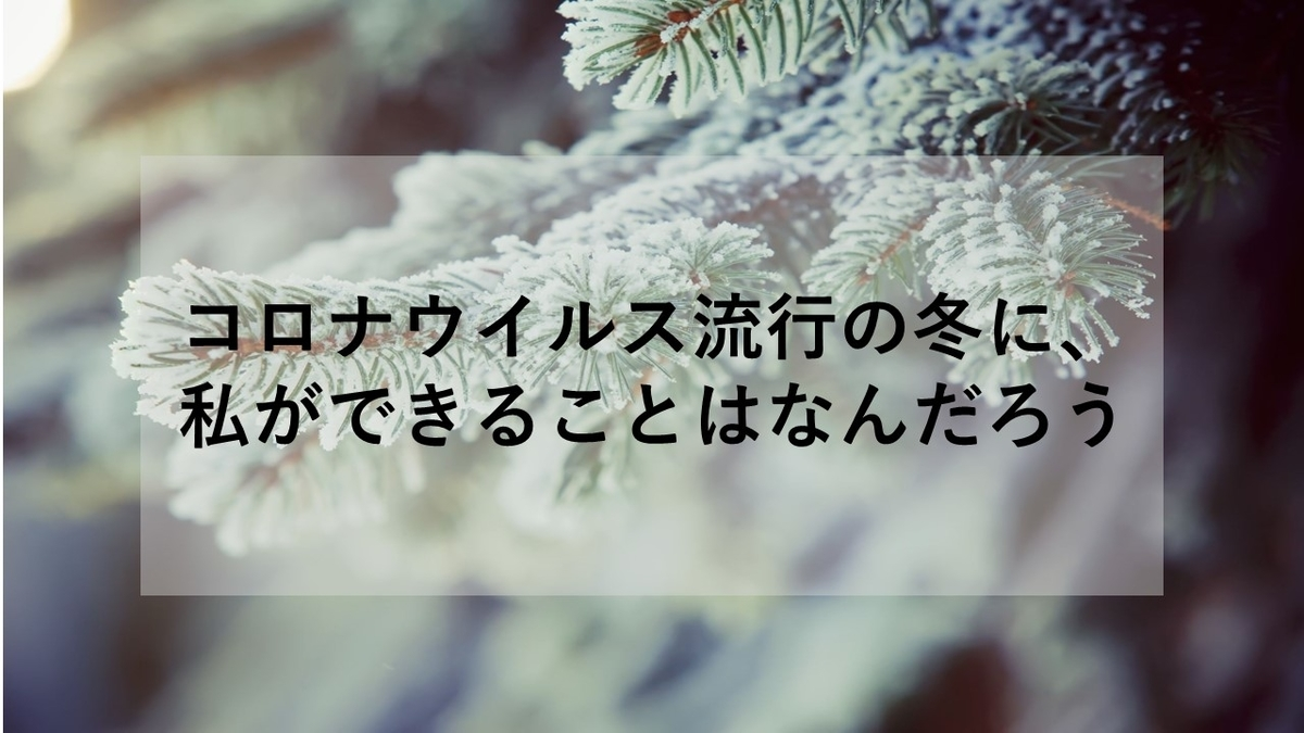 f:id:fukufukudo269:20201214173015j:plain