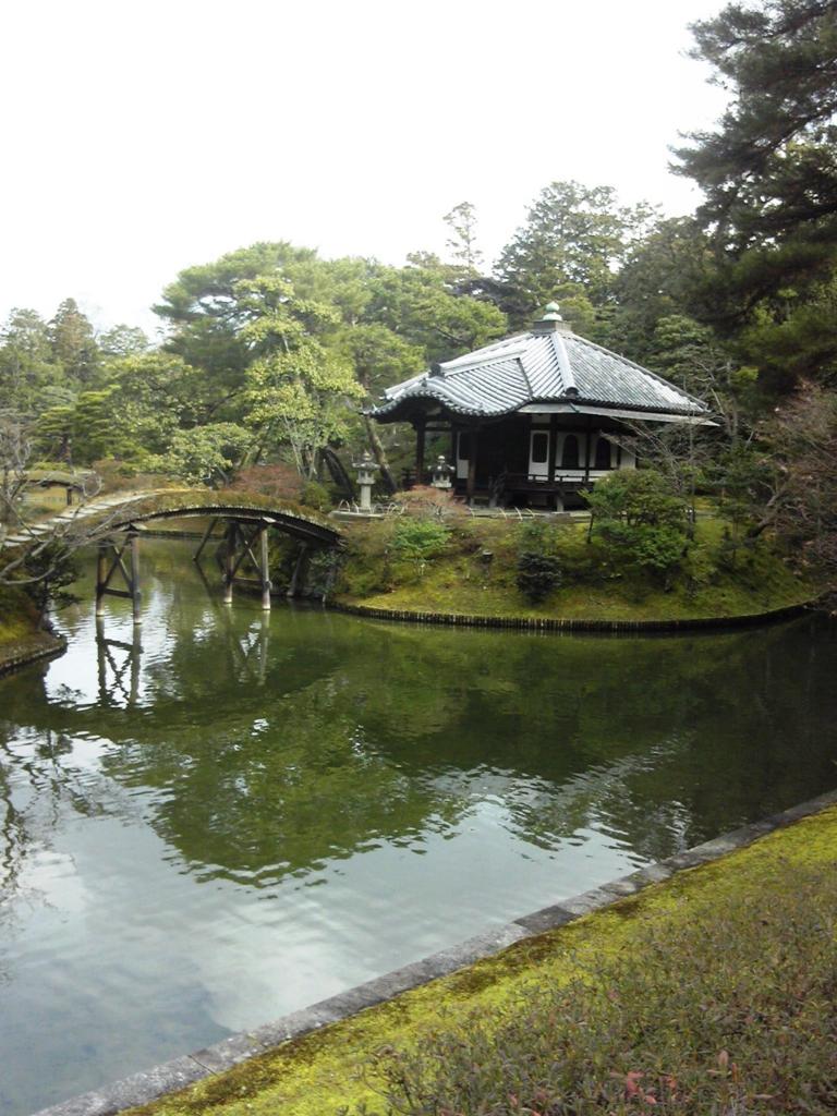 f:id:fukufukuichiko:20170123125038j:plain