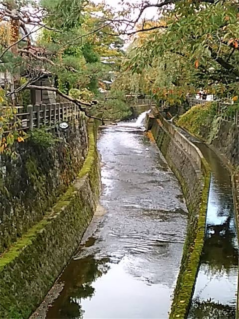 f:id:fukufukuichiko:20190816123237j:image