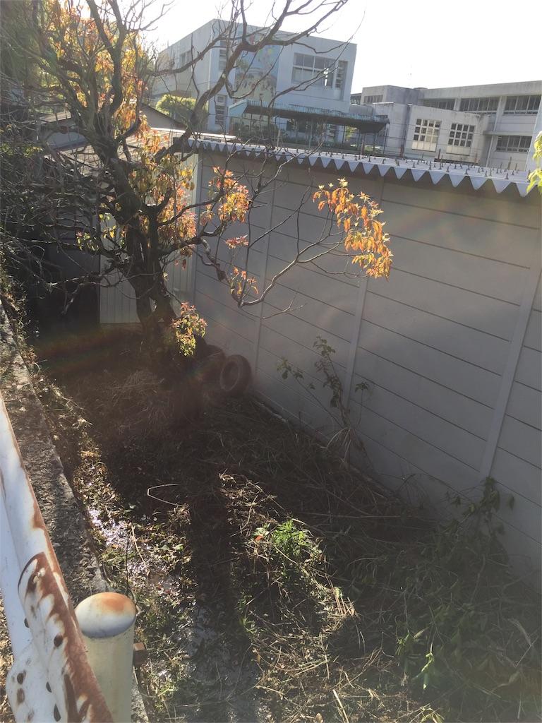 f:id:fukugawa-es:20180419075349j:image
