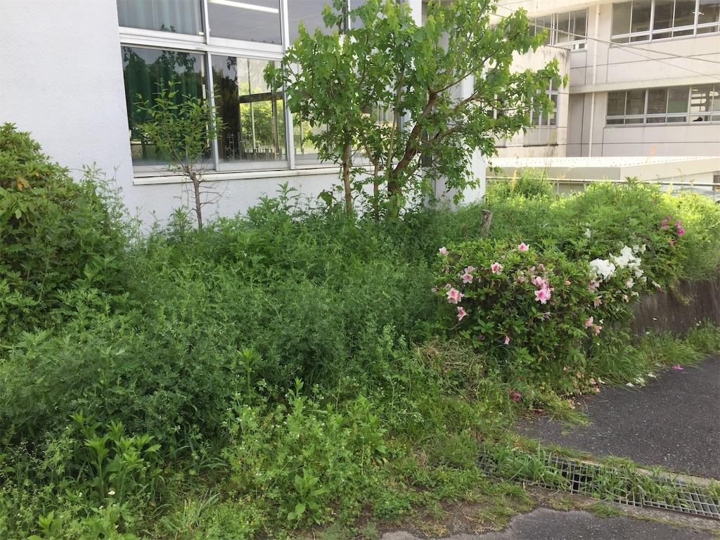 f:id:fukugawa-es:20180502081516j:image