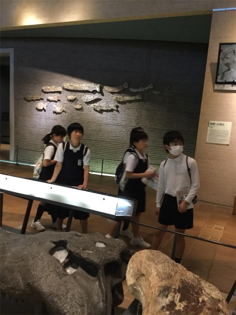 f:id:fukugawa-es:20180511140758j:image